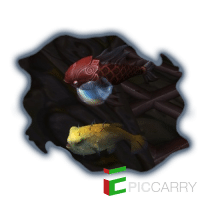 Secret Fish and Where to Find Them